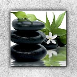Foto na plátno Kvítek na kamenech 1 70x70 cm
