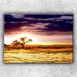 Foto na plátno Vyprahlá step 1 70x50 cm