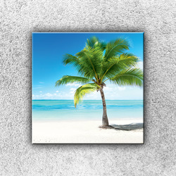 Foto na plátno Osamocená palma 1 30x30 cm