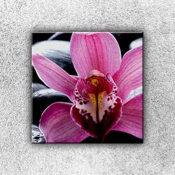 Foto na plátno Fialková orchidej 1 30x30 cm