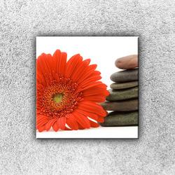 Foto na plátno Gerbera s kameny 2 30x30 cm