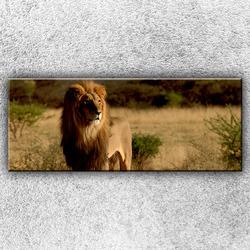Foto na plátno Lev v pozoru 1 150x60 cm