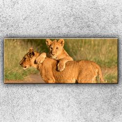 Foto na plátno Hrající si lvíčata 1 150x60 cm