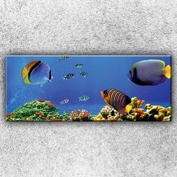 Foto na plátno Ryby v moři 1 150x60 cm