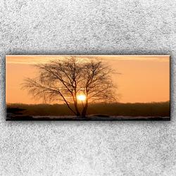 Foto na plátno Silueta stromu 150x60 cm