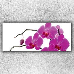 Foto na plátno Růžové kvítky 120x50 cm
