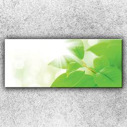 Foto na plátno Zelené lístky 120x50 cm