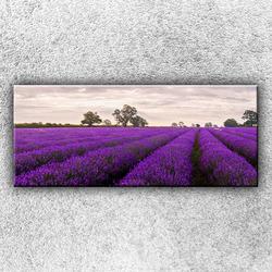 Foto na plátno Fialové pole 1 120x50 cm