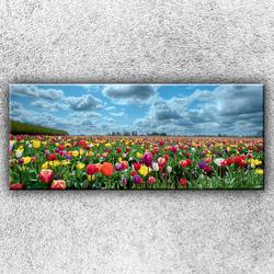 Foto na plátno Pole barevných tulipánů 2 120x50 cm