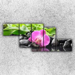 Foto na plátno Růžová orchidej 3 170x70 cm