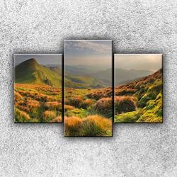 Foto na plátno Vysokohorská louka 1 105x70 cm