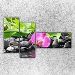 Foto na plátno Růžové zátiší 130x80 cm