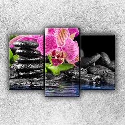 Foto na plátno Kameny s květinou 3 75x50 cm