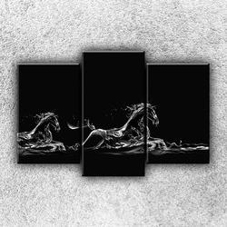 Foto na plátno Vodní koně 75x50 cm