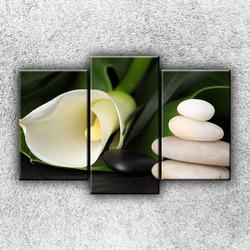 Foto na plátno Bílé zatiší 2 75x50 cm
