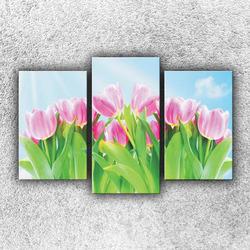 Foto na plátno Pole tulipánů 75x50 cm