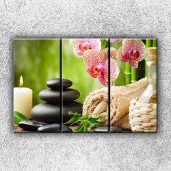 Foto na plátno Orchideje s kameny 2 120x80 cm