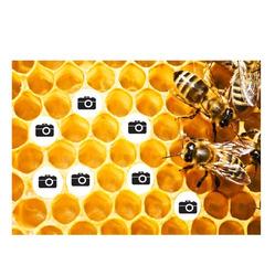 Deka Koláž včely 360g/m² 140x200 cm