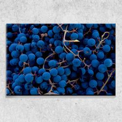 Foto na plátně Hroznové víno 90x60 cm