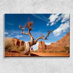 Foto na plátně Poušť 90x60 cm