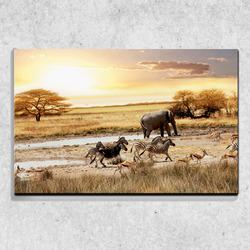Foto na plátně Safari 90x60 cm