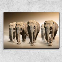 Foto na plátně Stádo slonů 90x60 cm
