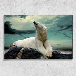 Foto na plátně Zimní medvěd 90x60 cm