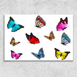 Foto na plátně Motýlci 90x60 cm