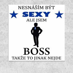 Obraz 30x30 Sexy boss