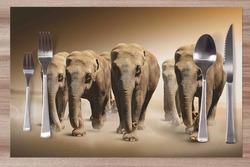 Prostírání Stádo slonů 42x28 cm