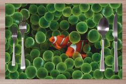 Prostírání Nemo 42x28 cm