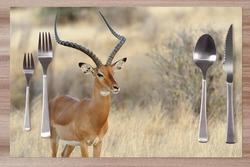 Prostírání Antilopa 42x28 cm