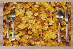 Prostírání Spadané listí 42x28 cm
