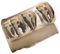 Deka Sloni v poušti