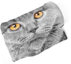 Deka Kočičí pohled