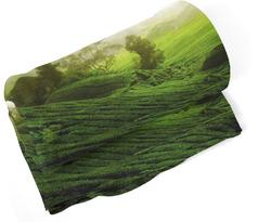 Deka Zelené pole