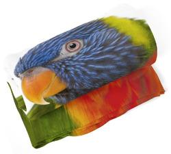 Deka Barevný papoušek