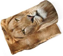Deka Lví pohled