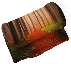 Deka Les na podzim