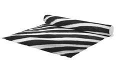 Běhoun Zebra