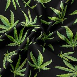 Interlock – Cannabis