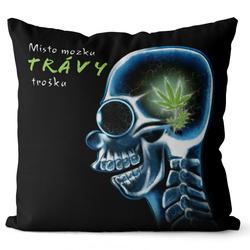 Polštář Místo mozku trávy trošku