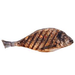 3D polštář Ryba