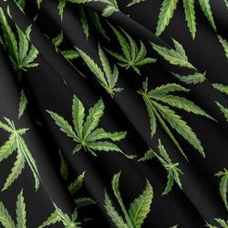 Softshell – Cannabis