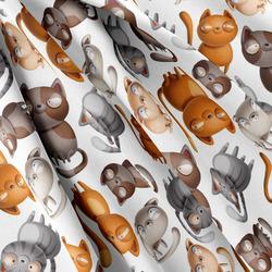 Softshell – Cats