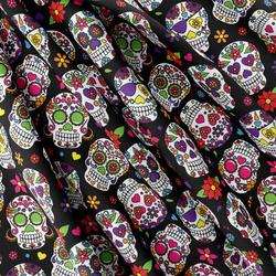 Softshell – Mexican skull