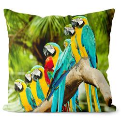 Polštář Papoušci