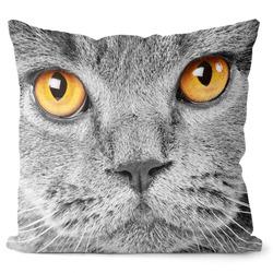 Polštář Kočičí pohled
