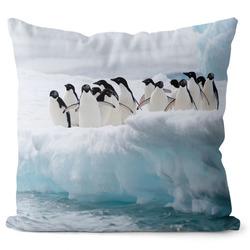Polštář Skupina tučňáků