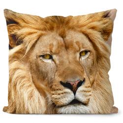 Polštář Lví pohled